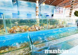 Top cửa hàng bán hải sản tươi sống sạch, uy tín tại Thủ Đức TP.HCM