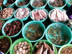 Top cửa hàng bán hải sản tươi sống sạch, uy tín tại Hóc Môn TP.HCM