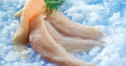 Top cửa hàng bán hải sản đông lạnh tươi ngon, uy tín tại Củ Chi TP.HCM