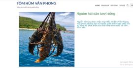 Cửa hàng bán tôm hùm tươi sống Vân Phong