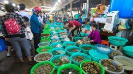 Chợ hải sản Hàng Dương - H.Cần Giờ