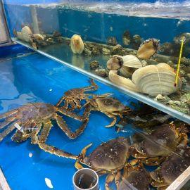 Hải sản tươi sống Bình Dương - TP.Thủ Dầu Một, Bình Dương